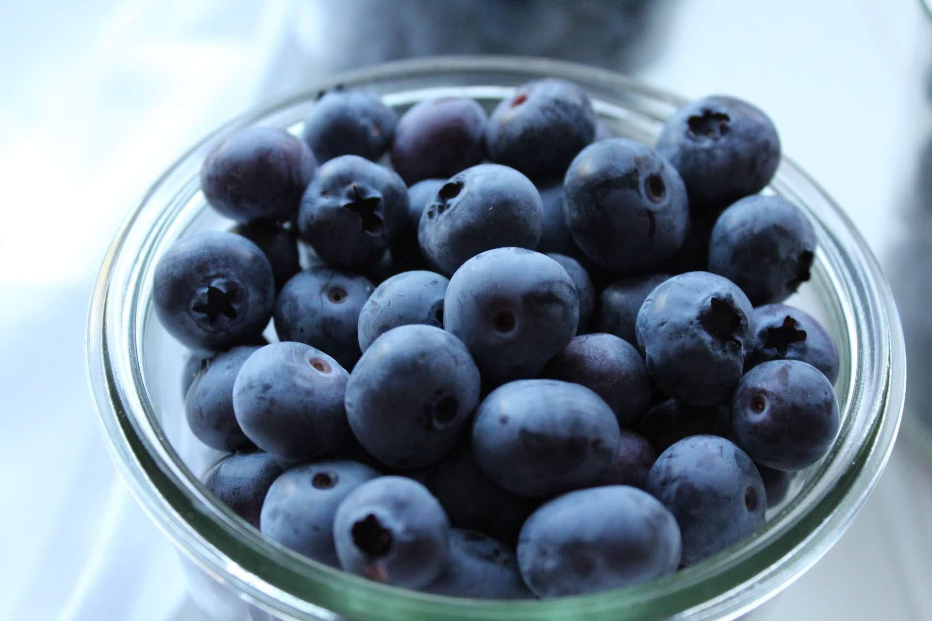 overhead shot blueberries in weck jar