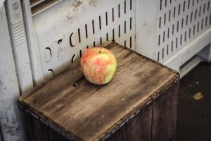 single apple on wood bench